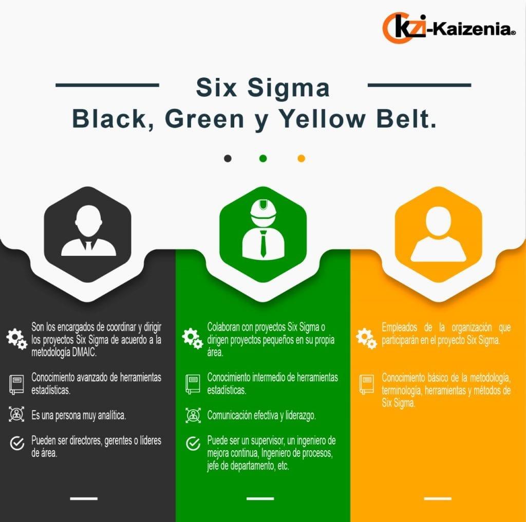 six-sigma-yellow-green-black