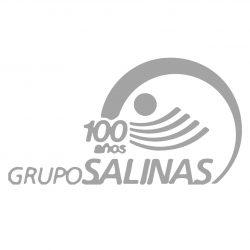 grup salinas_G-01